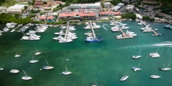 American Yacht Harbor Marina - St. Thomas