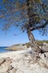 Limestone Bay - Anguilla