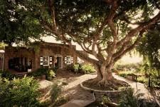 Montpelier Plantation & Beach Hotel - Nevis