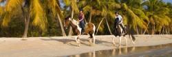 Mustique Equestrian Centre