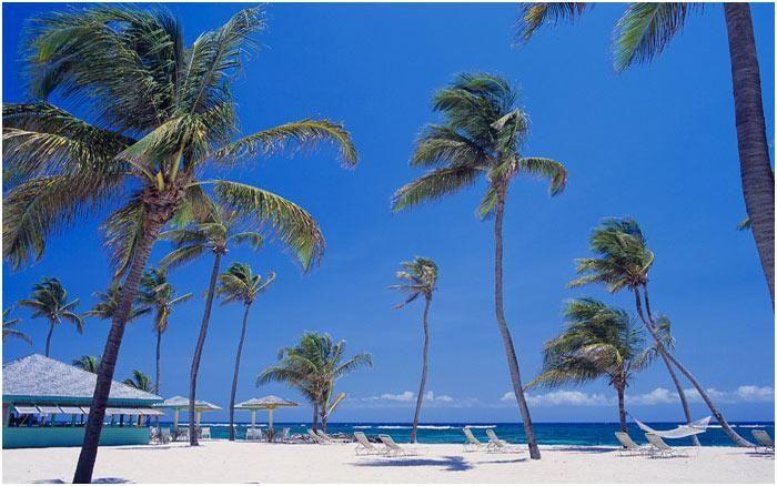 Nisbet Plantation Beach Club - Nevis