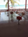 The Lobster Trap Restaurant - Anegada