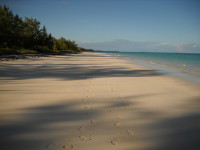 South Andros Island Parcel For Sale - The Bahamas