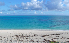Stay At Castaway - Salt Cay, Turks & Caicos