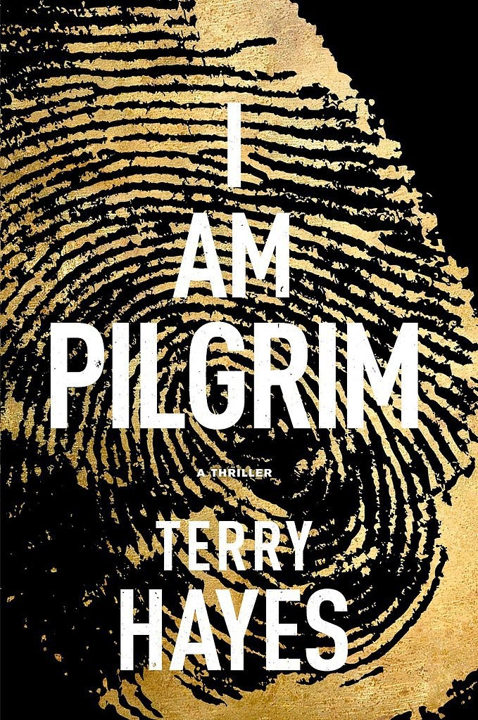 Great Beach Read - I Am Pilgrim
